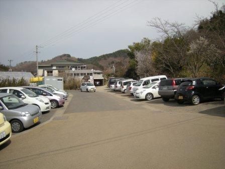 花見山 2011 002.jpg