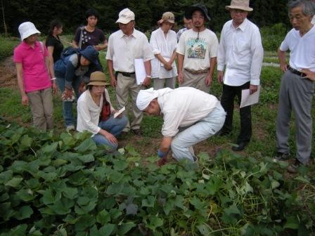 小豆畑農園 006.jpg